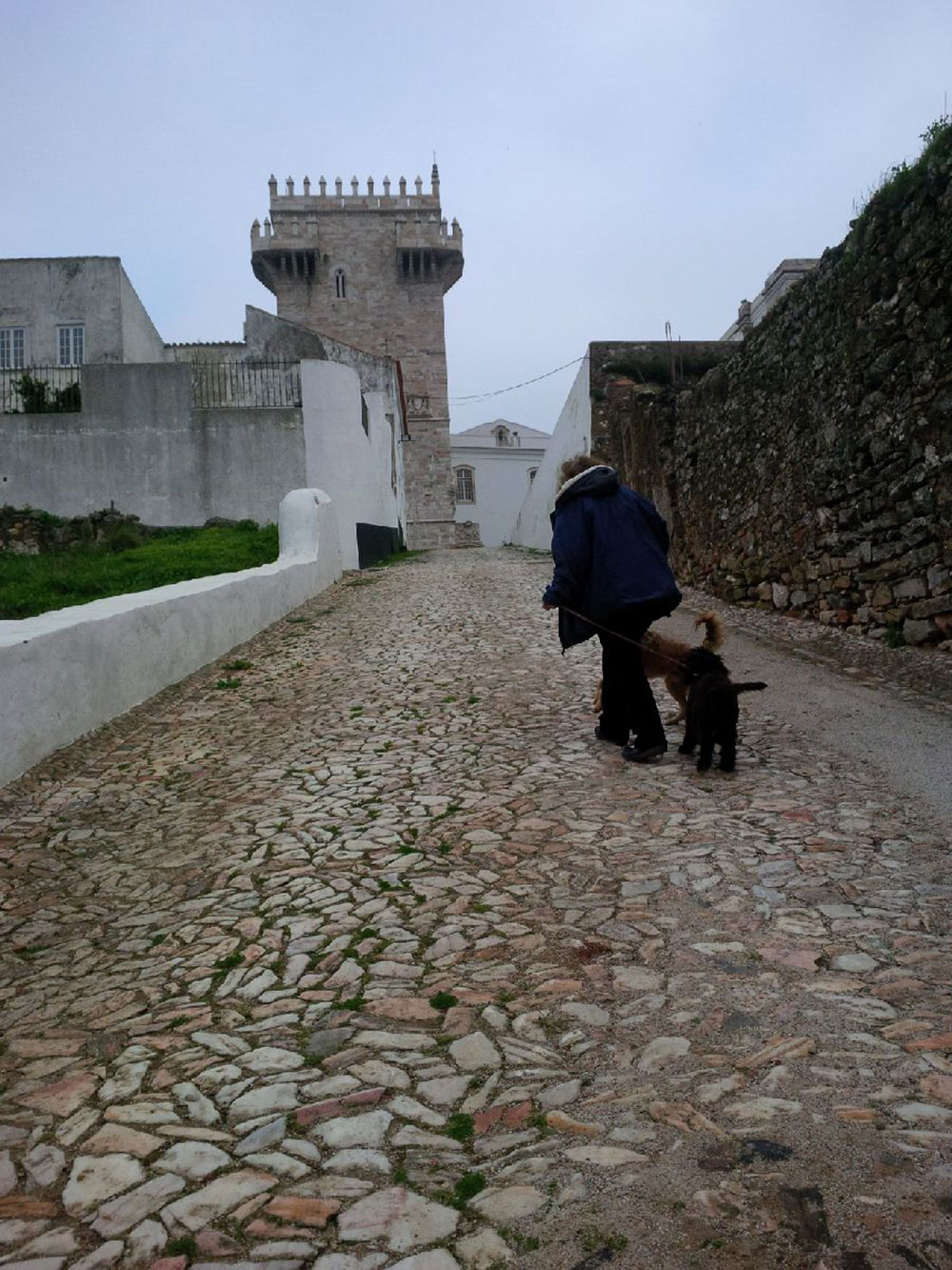 The pousada offers a super dog-walking environment