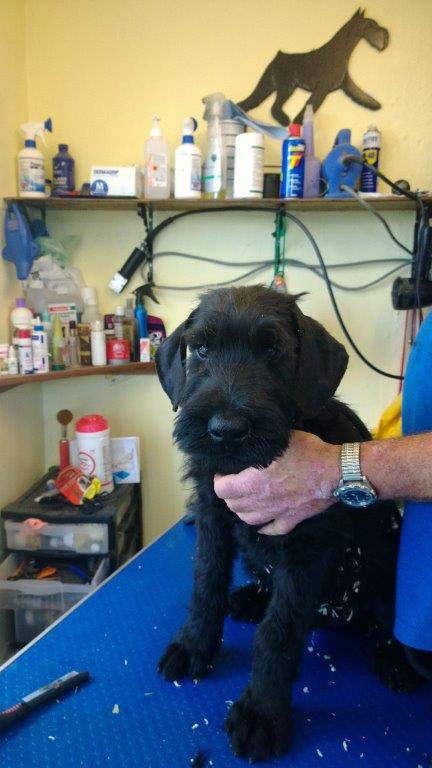 Nikki at the beauty parlour, preparing for her big move