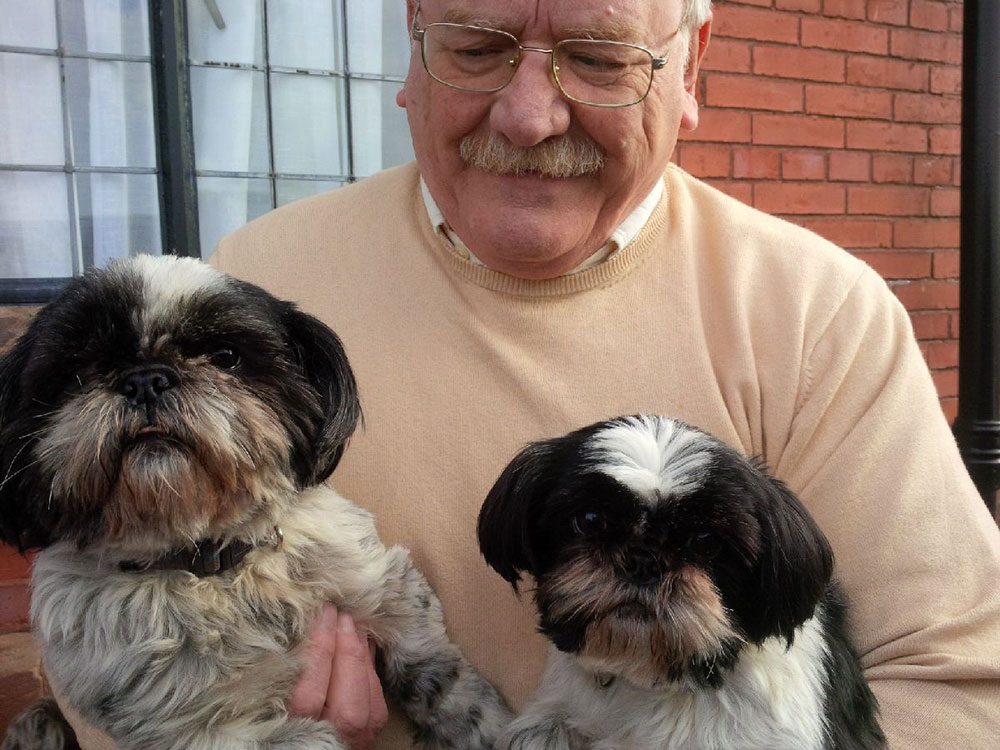 Arwen and Bella, seen here with Alan, are a lively pair of Shi Tzus who are great fun and full of mischief