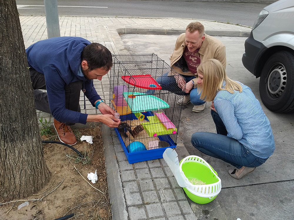 As we pulled into our meeting place to collect Sally's hamster and Sinzy and Alex's rabbits, we saw that the two couples had met up and were exchanging stories about their travelling pets!, Spain