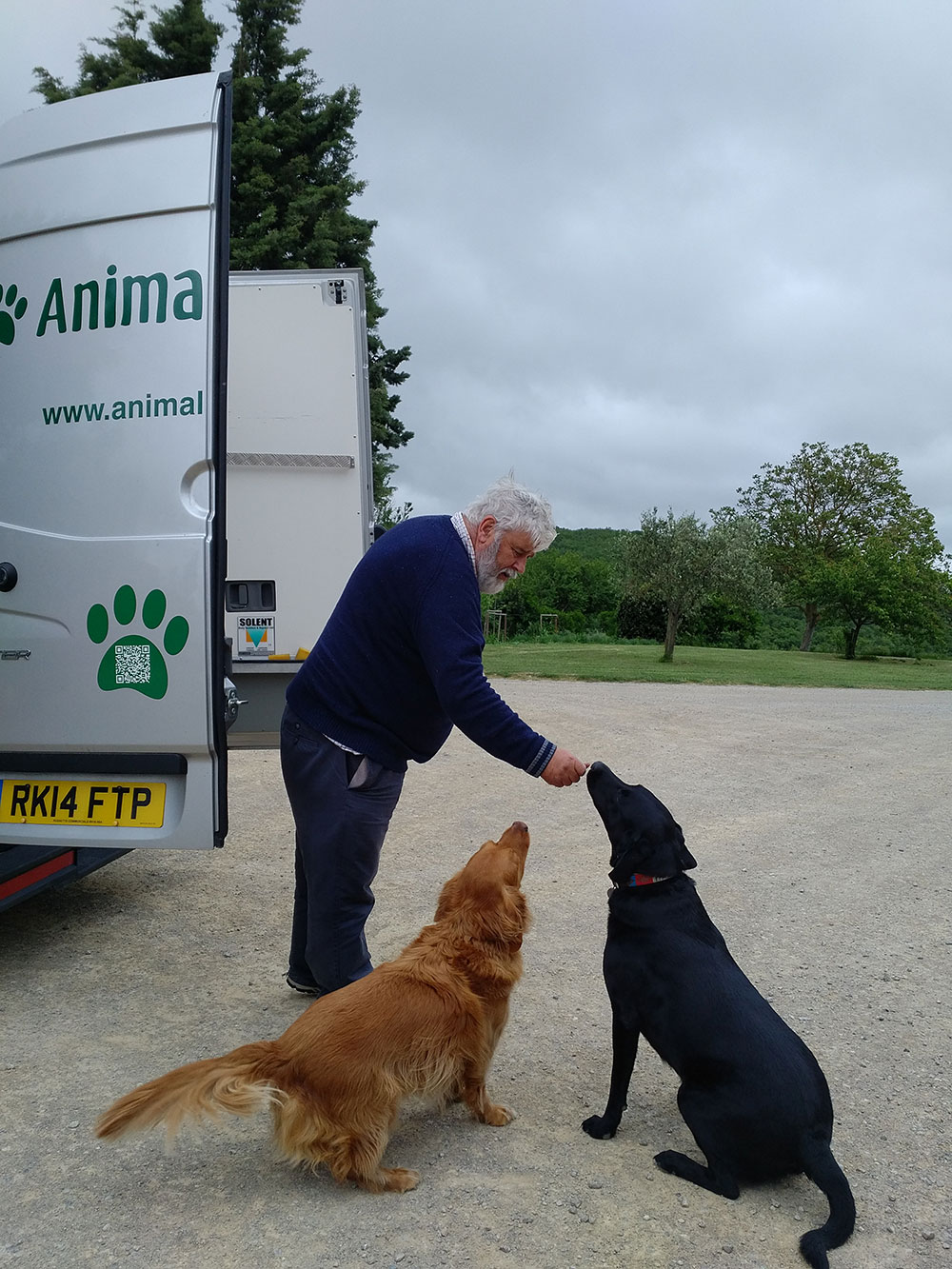 Courier M making friends with both dogs in the time-honoured tradition — with a couple of tasty treats!