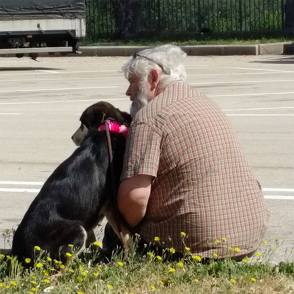 Sylvia is quite a shy girl, but very affectionate. Here's courier M telling her a bit about life in the UK.