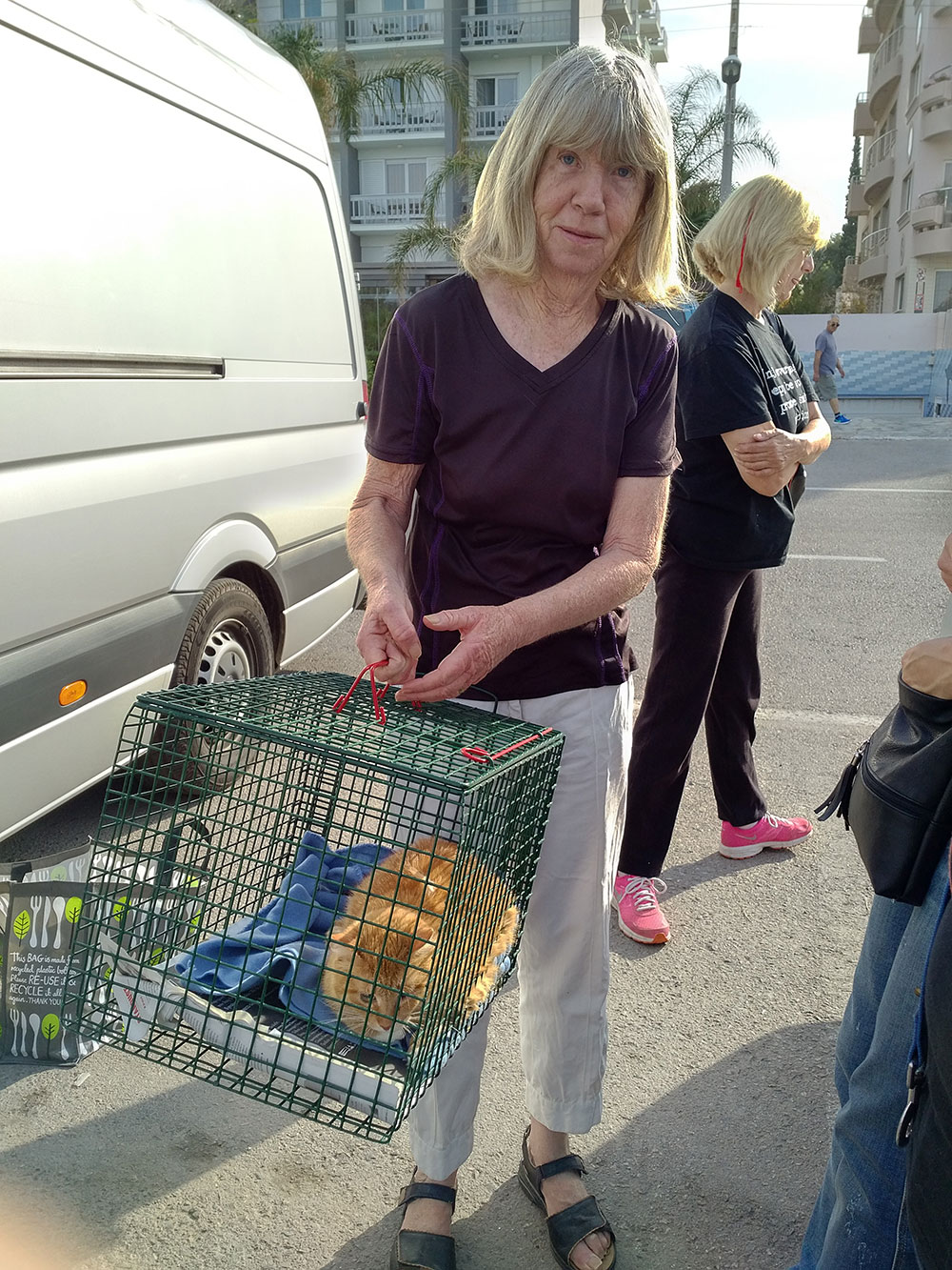 Carol, who delivered Lucky, is a board member at Nine Lives. She's been involved in animal rescue for quite a while, having previously worked for Greek Animal Rescue in Athens.