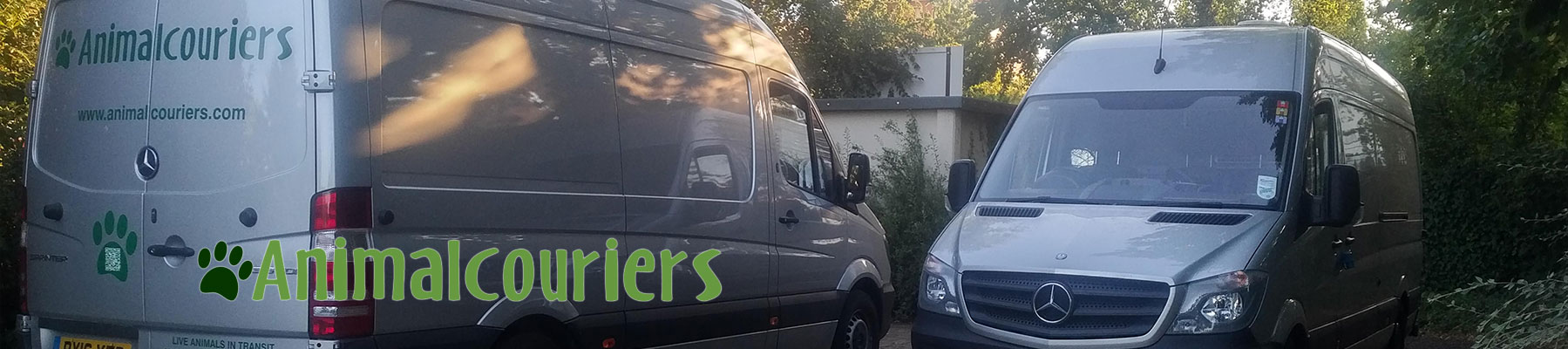 Two Animalcouriers Mercedes Sprinter vans