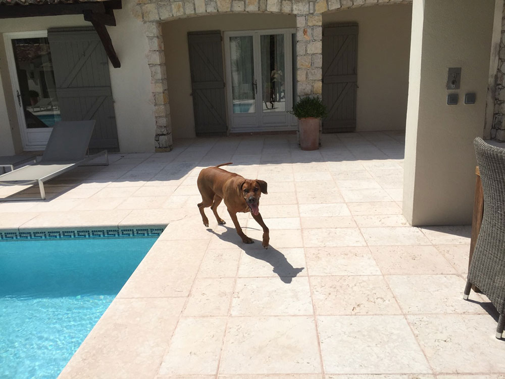 Gia checking out the pool