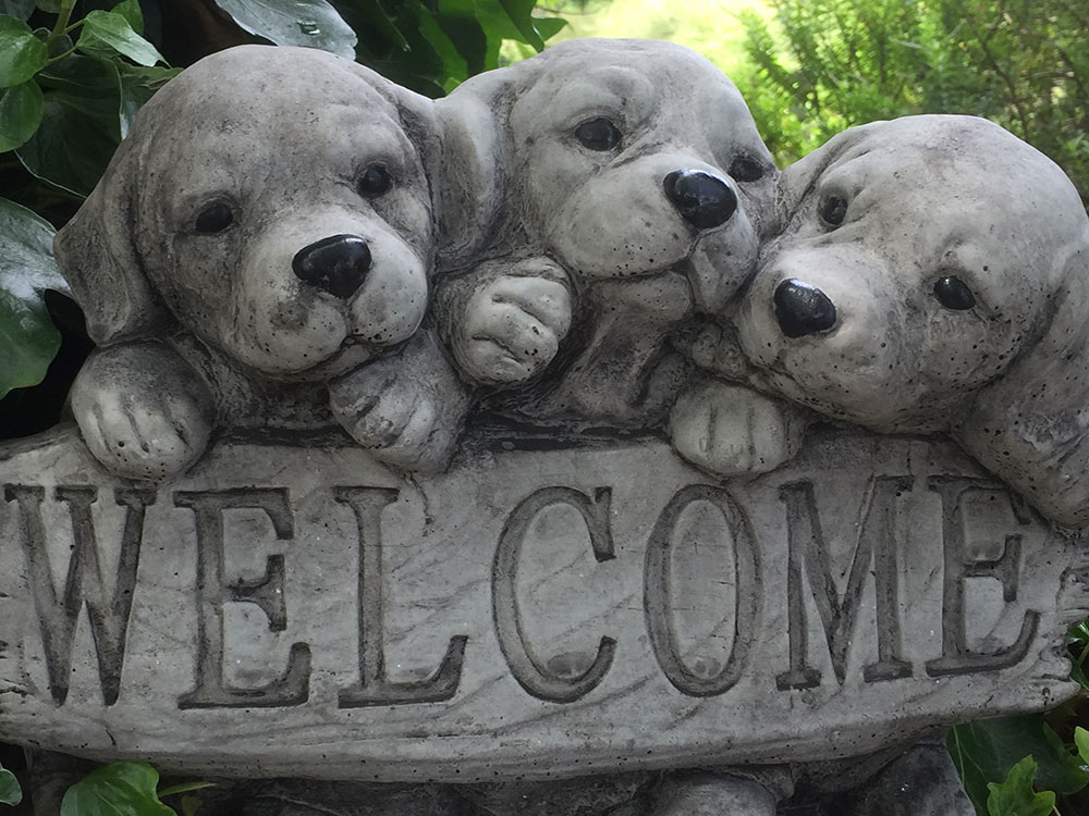 What a great welcome sign!