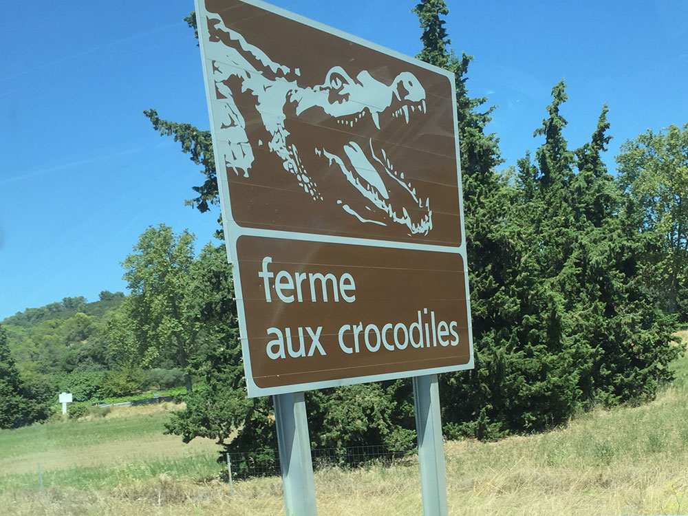 We decided not to stop off at the crocodile farm…