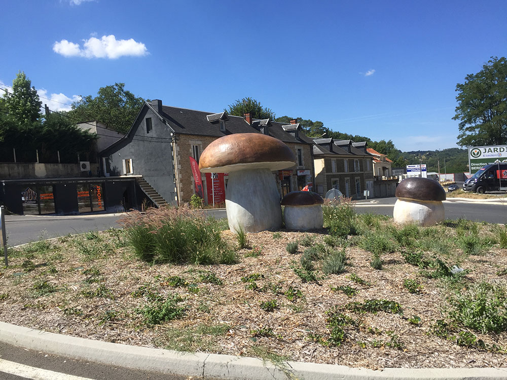 Giant cèpes on the roundabout…