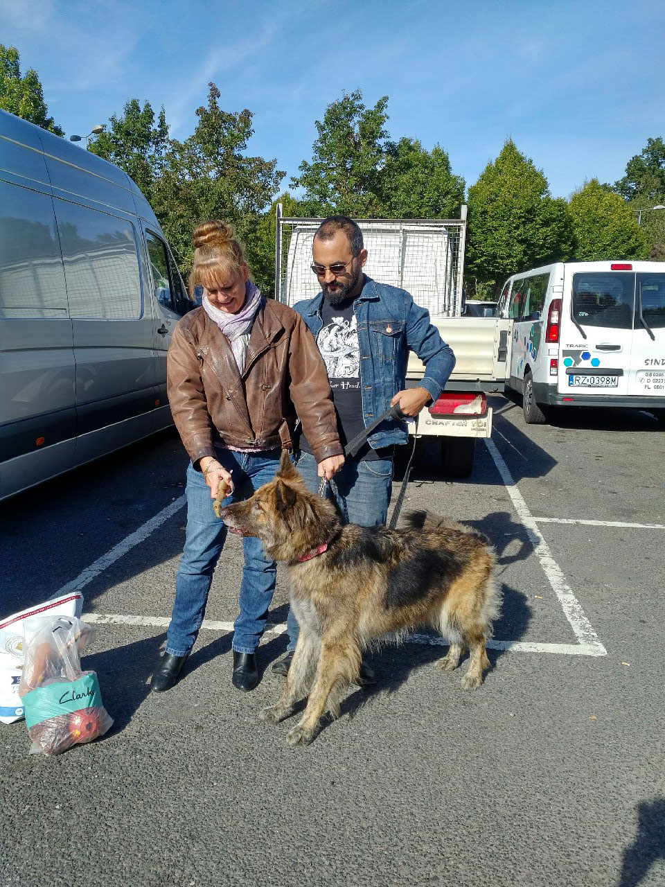 We collected Angel from her owners at Maidstone Services, on our way to the coast