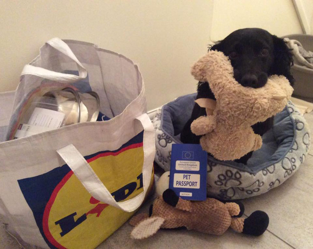 Sandra made all the practical arrangements, while Tilly packed her favourite toys