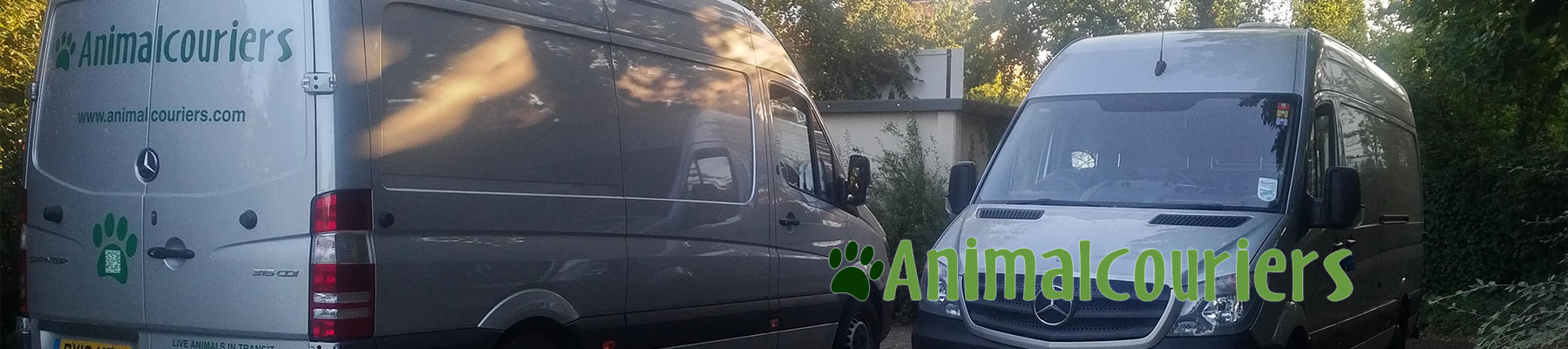 two Animalcouriers vans