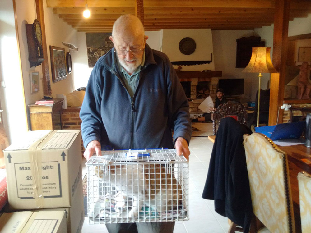 Owner Barry places Monty in a cage so that he can be transferred safely from his house to his bedroom in our van
