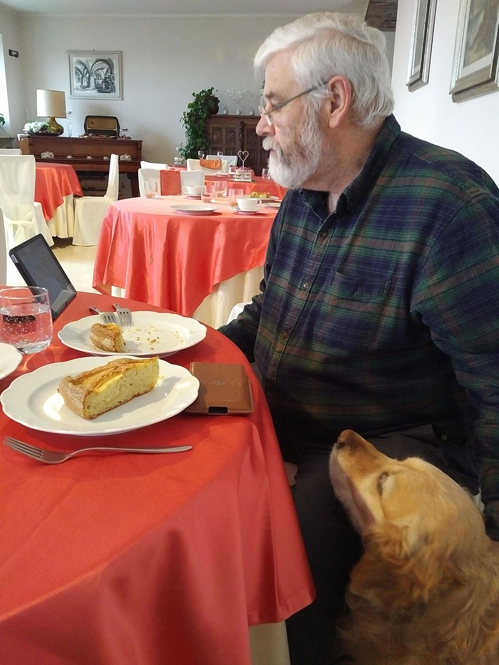 At the hotel in Roppolo Courier M enjoyed a fine breakfast with a side order of Scrabble and Golden Retriever