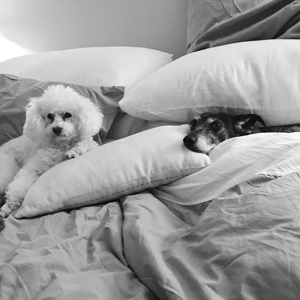 Maggie and Becky all tucked up in bed together