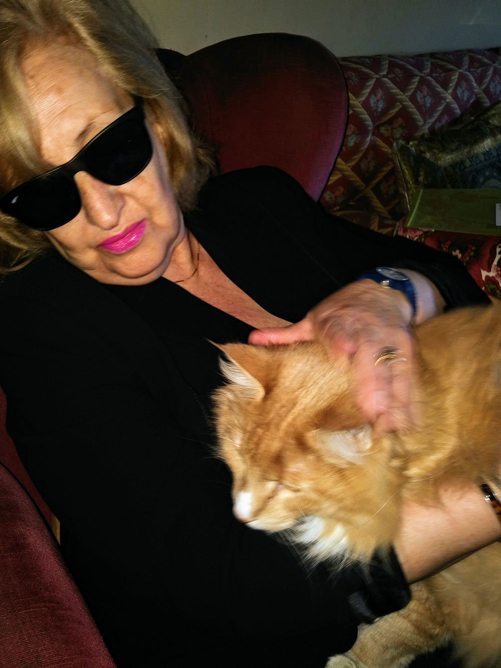 "When we delivered Simba, his grandma was worried he might be too heavy to cuddle. ""He's so big!"" she exclaimed, as the last time she'd seen him, he was just a kitten. Looks like that cuddle happened anyway!"
