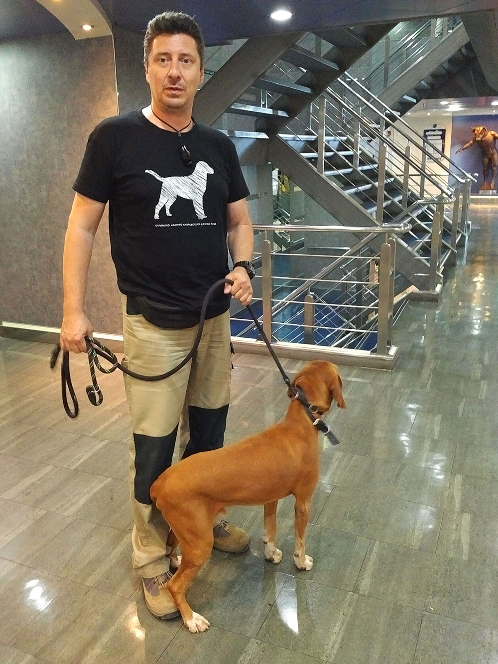 Akis walking Hector, a gorgeous Visla, who's travelling with us from Athens to rejoin Evangelia in London.