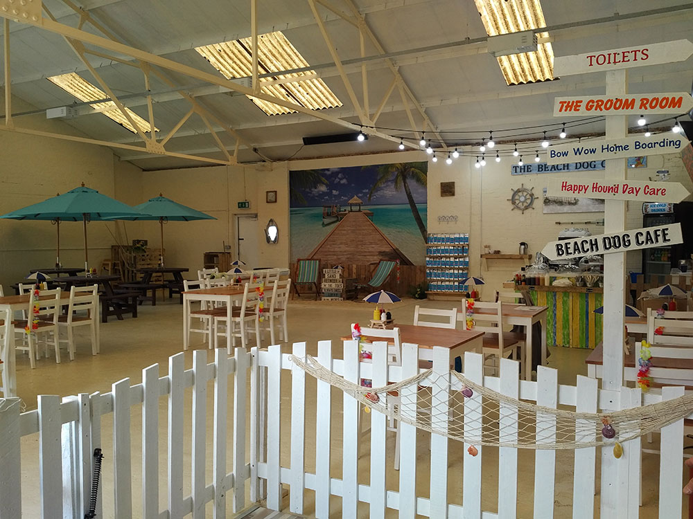 The Beach Dog Café is a lovely airy and welcoming space for humans and dogs alike