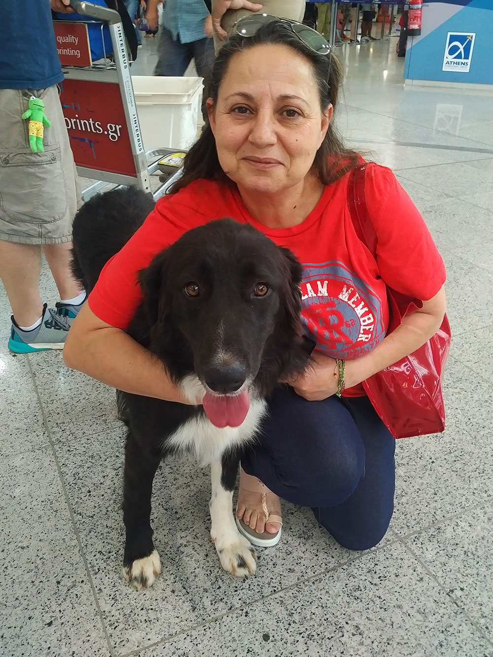 Gorgeous Anaestas has been adopted by Rachel, who is waiting eagerly for Anaestas to reach the UK. It was an emotional farewell for her foster mum, who brought her to the airport to catch the flight.