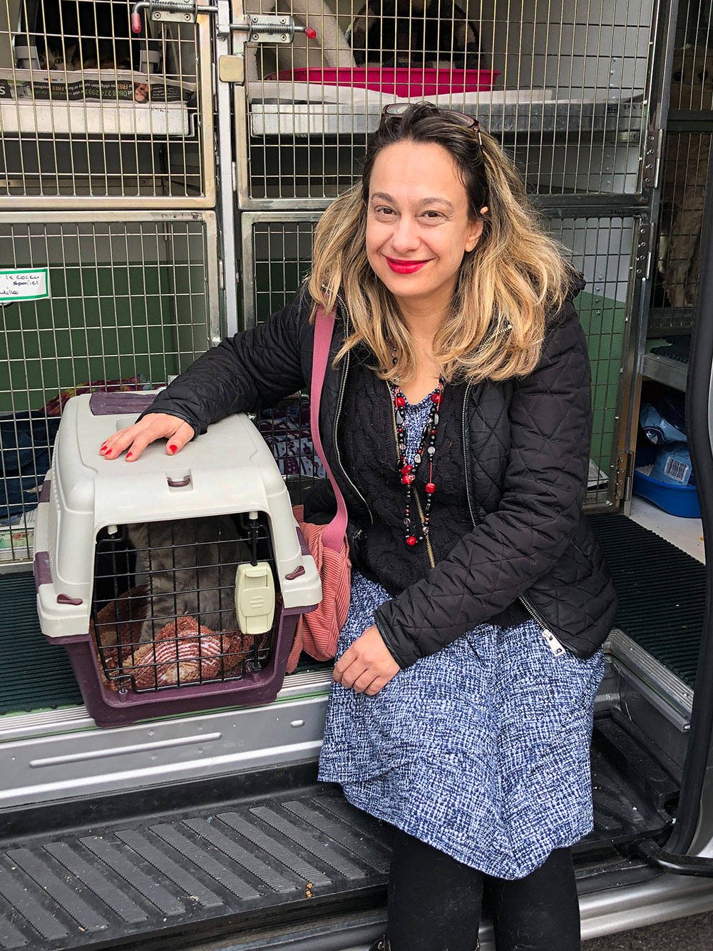 Nine Lives Greece arrived with two kittens and a cat who've been adopted by Michelle in England