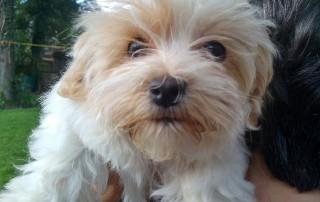 Cute Margot