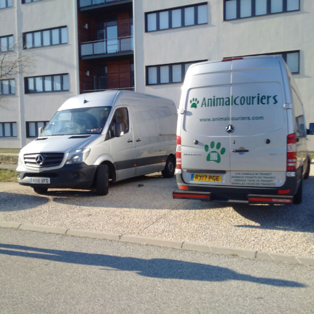 Our vans near Valence