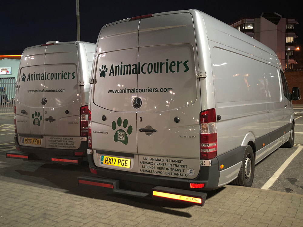 animal passengers: our two vans waiting to check in at Portsmouth…