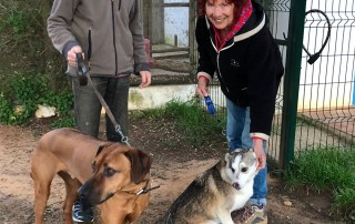 A warm welcome for this delightful pair of hounds from our friends Alan and Heather at Barking Mad Kennels, where they've stayed before. Alan and Heather will deliver them to Yvonne once she arrives.