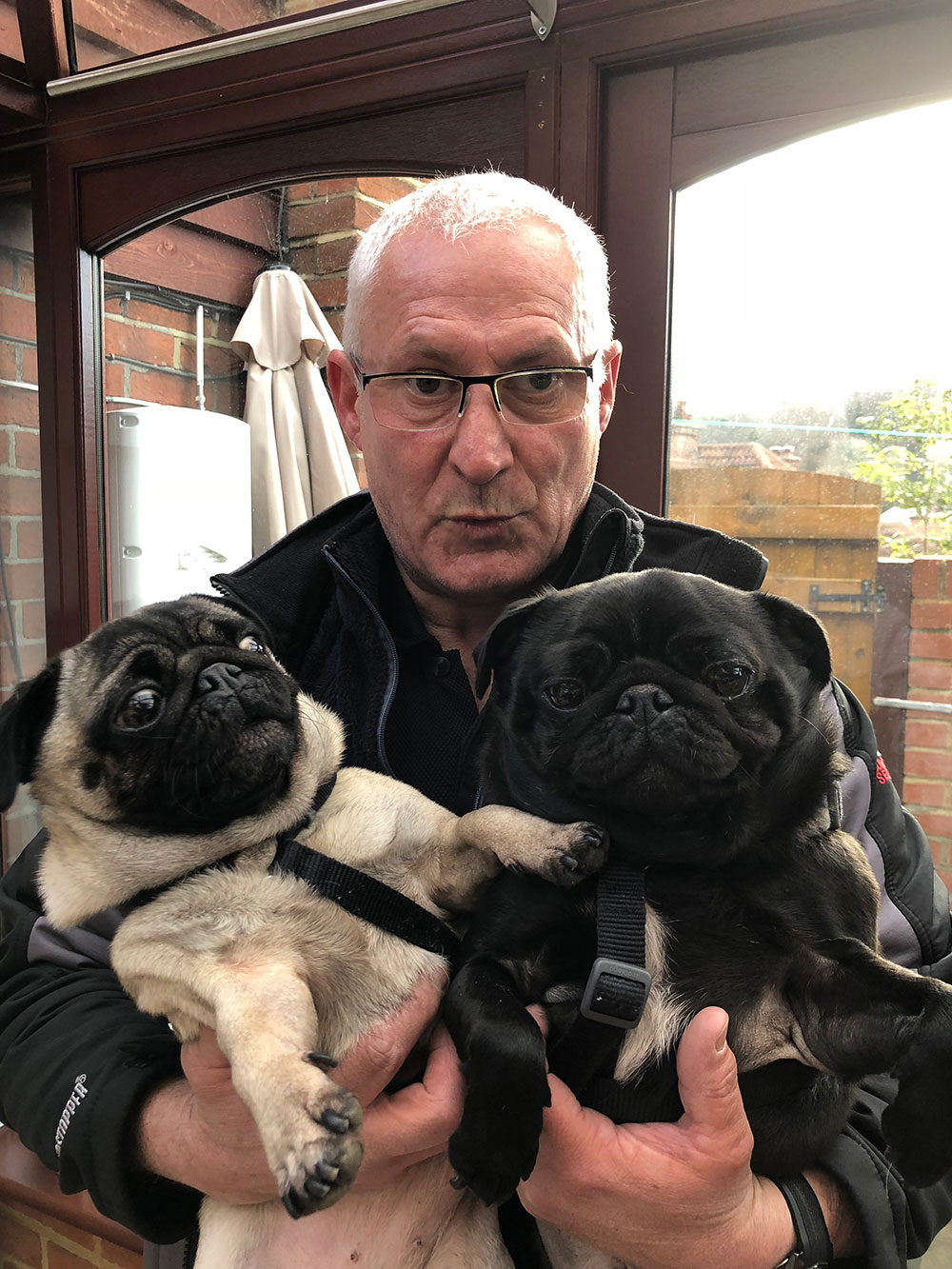 animal passengers: Millie and Spike having a cuddle with courier Marc. Because of the terrible UK weather, we collected these two a little early. They spent the night with courier J, to ensure they were ready for their journey with courier Marc.