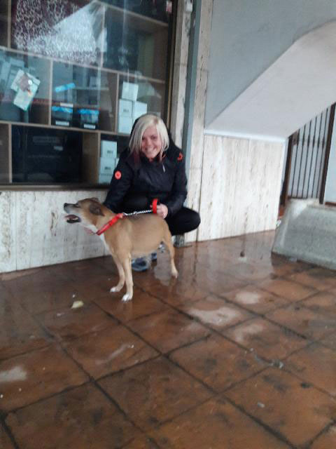 First things first — Staffie Levi reunited with owner Stacey in Benalmadena, Spain