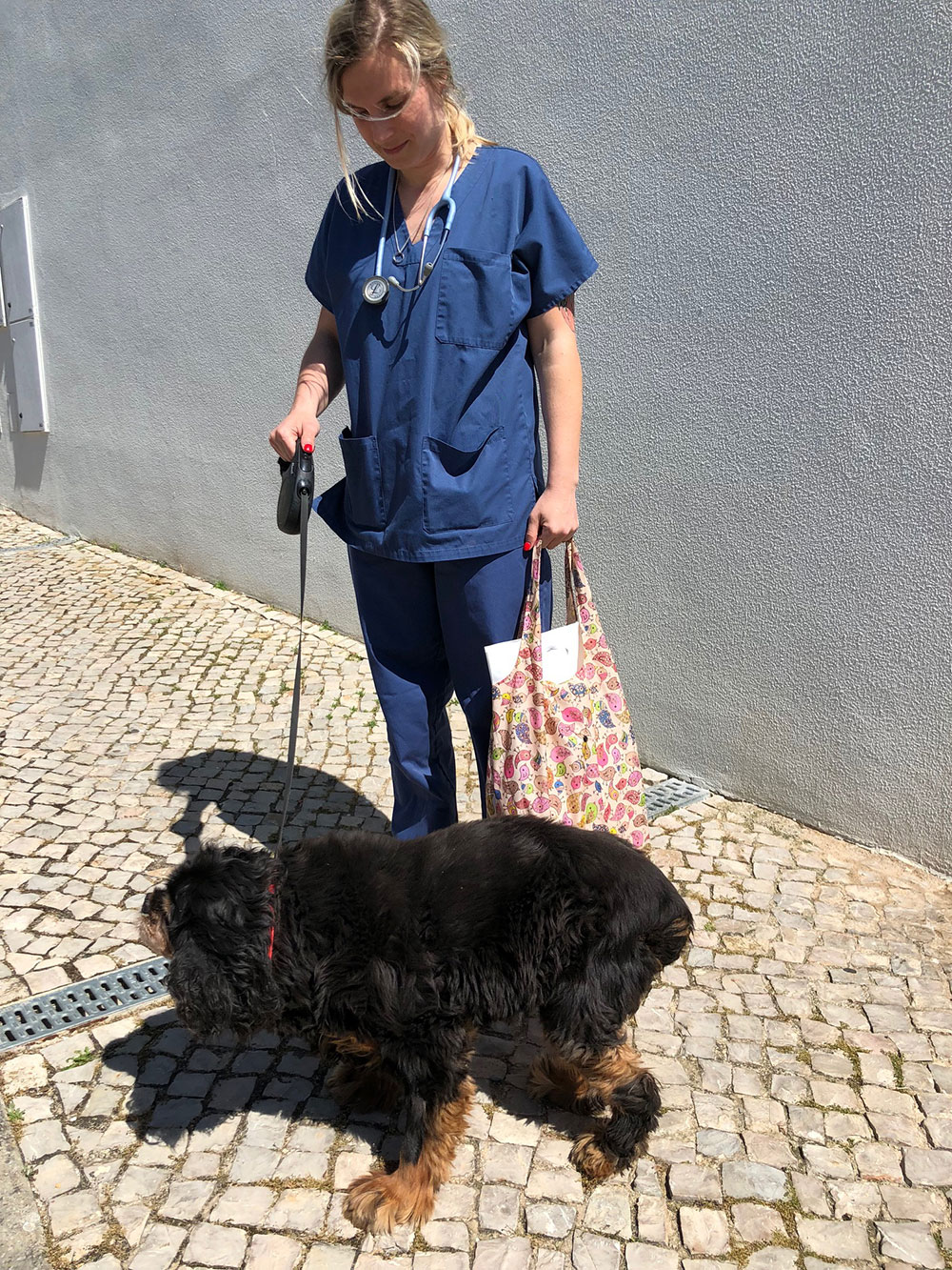 Bobby had to wait until his passport was ready, during which time he had the good fortune to be cared for by lovely vet Ann