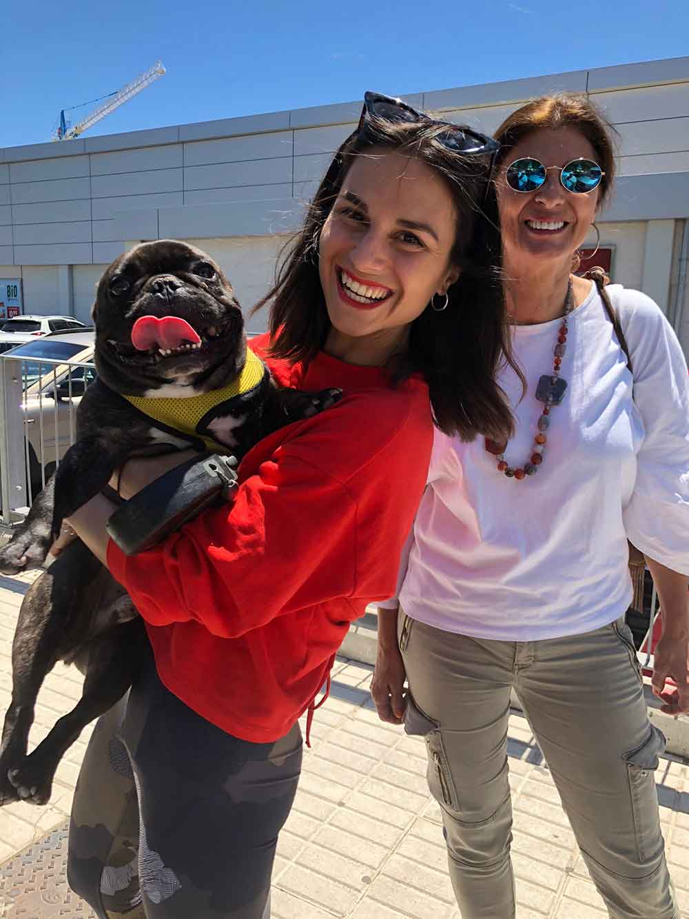 French Bulldog Marley was overjoyed to be back with owner Camila and her mum