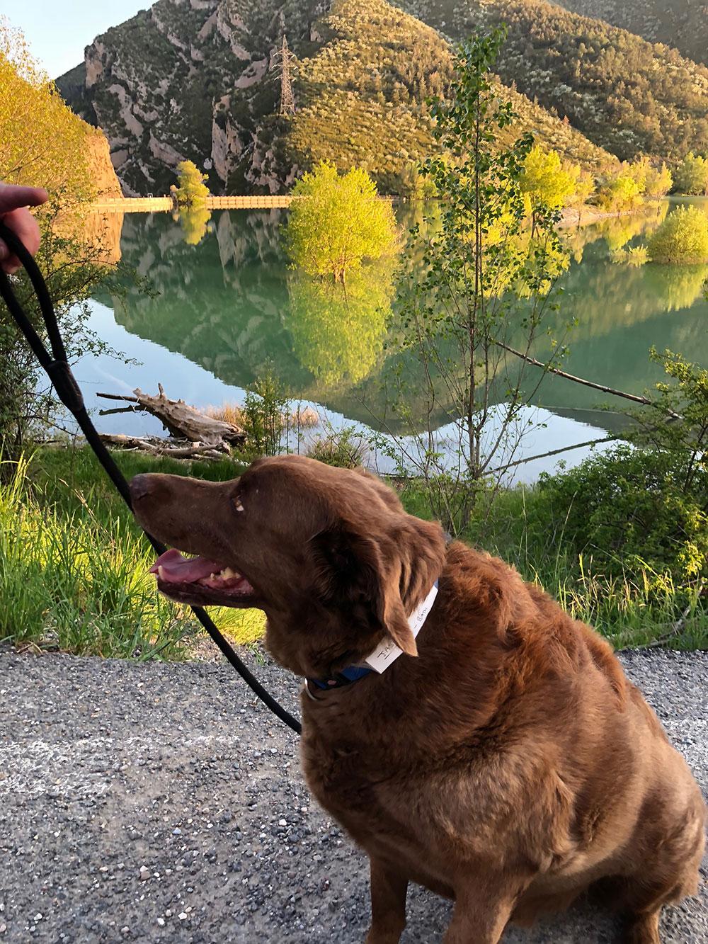 An evening lakeside stroll near Huercal