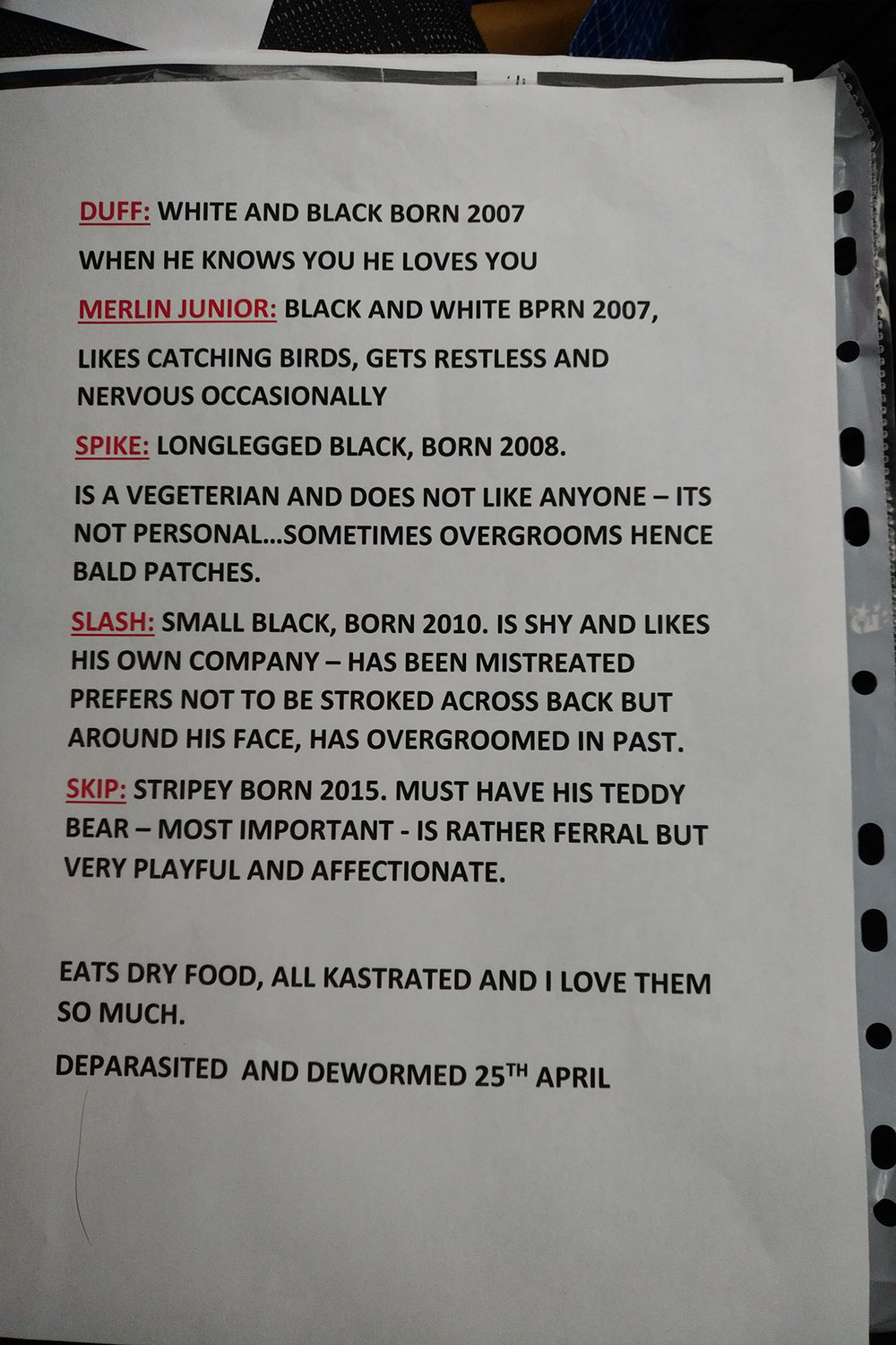 Besotted owner Helen provided a handy briefing sheet