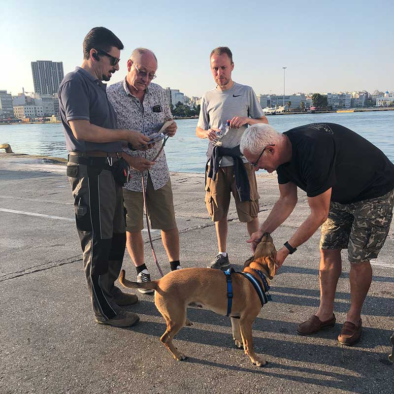 We met up with Warren and family friend Kevin at Piraeus Port on the Greek mainland. L to R Akis (pet taxi driver extraordinaire), Warren, Kevin, and courier Marc with Dexter, who was so happy to be reunited with Warren.