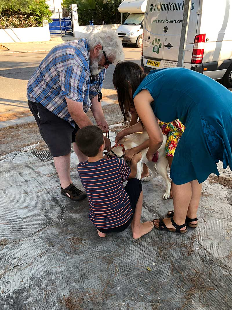 She leapt and bounded for joy when she was reunited with her family. Here's courier M helping Christine and her children Elena and Albert to sort out Luna's collar and lead, as she wriggled in all directions.