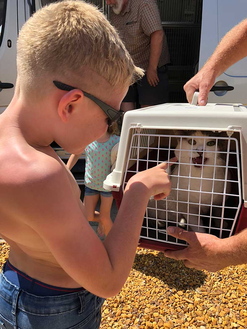 Tiglet quite vocal on being reunited — 'home at last' seemed to be the cry
