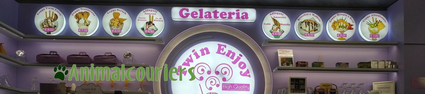 Italian Galiteria