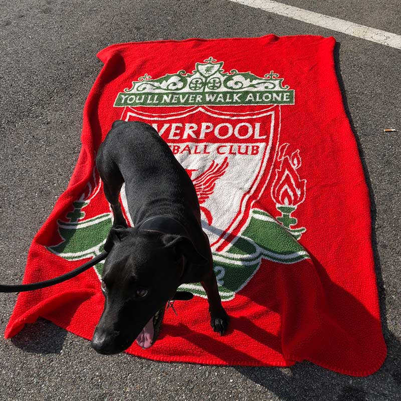Jake's travel kit included a Liverpool FC blanket, so he was able to root for his favourite team all the way to Spain!
