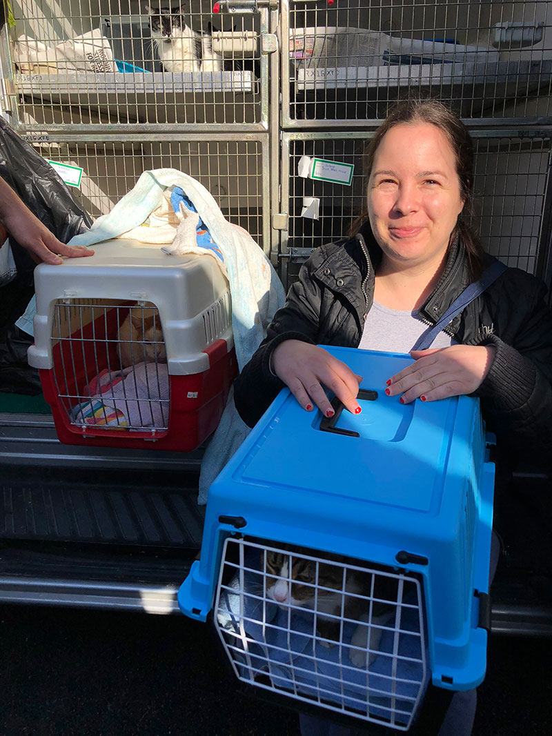Anne Marie arrives with her precious cats