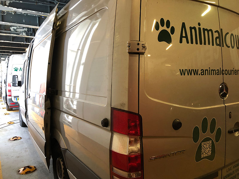 We were given a lovely airy spot for our vans on the Italy-bound ferry. We were able to leave the van doors open, with all the pets safely tucked up inside. Unlimited access to the deck meant we could watch over them at all times.