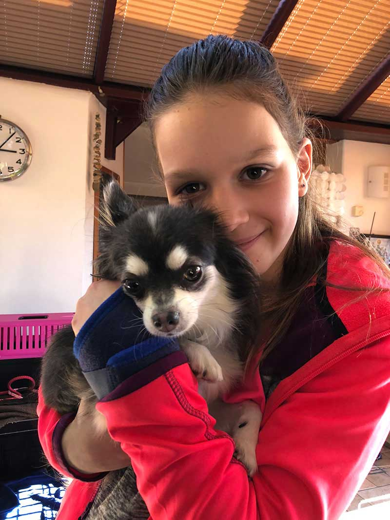 Sweet-natured Izzy (who's smaller than all the cats!) homeboarded with us for a few days. Here she is having a cuddle with Maddie.