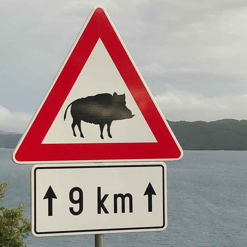 Another sign near Dubrovnik — presumably a warning about road hogs!