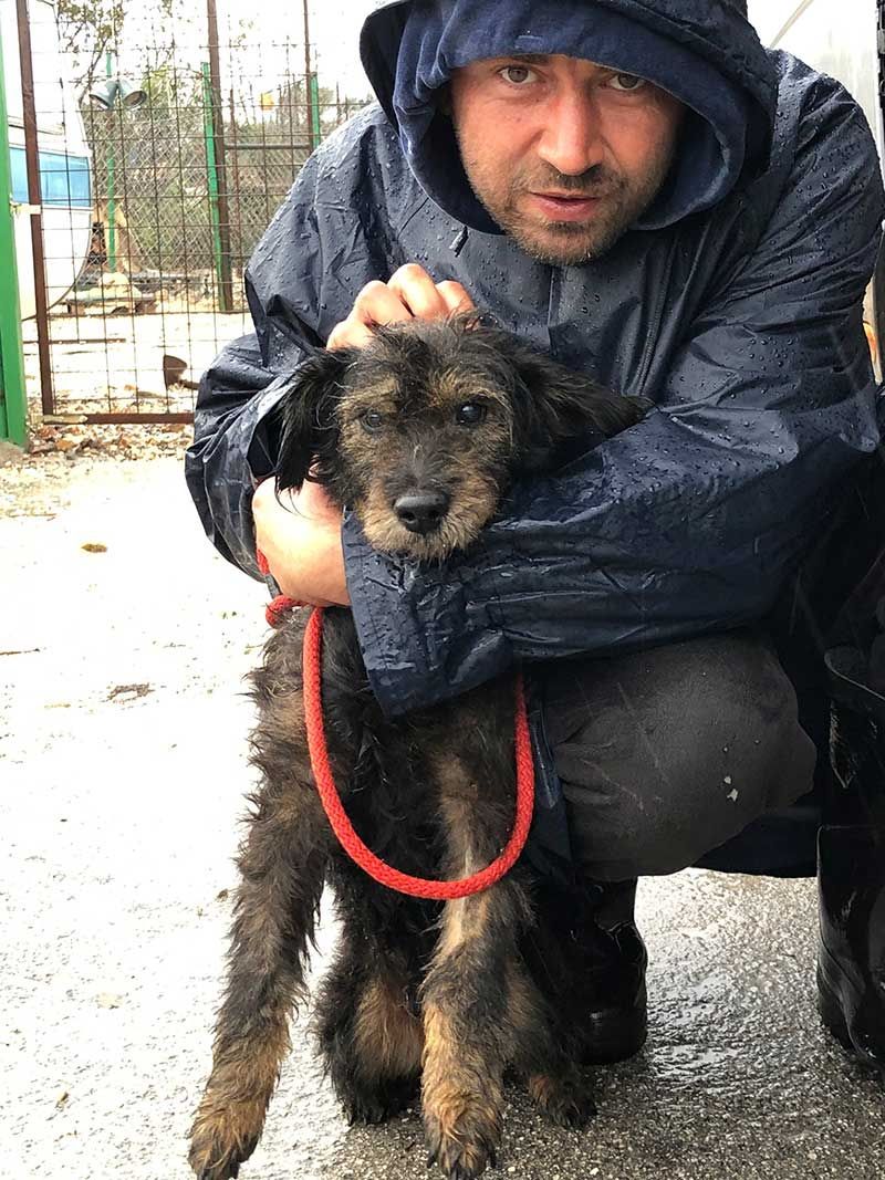 A goodbye hug for Maxi from Tomo, who works at the shelter every day, feeding, cleaning out and watching over the dogs