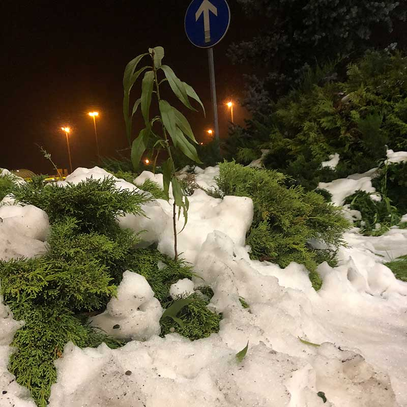 On the trip from Hungary and Croatia to Italy, the temperatures ranged from plus 15C to minus 2C. We also experienced thunder, lightning, rain, sleet, sun, clouds, light breezes and, finally, snow!
