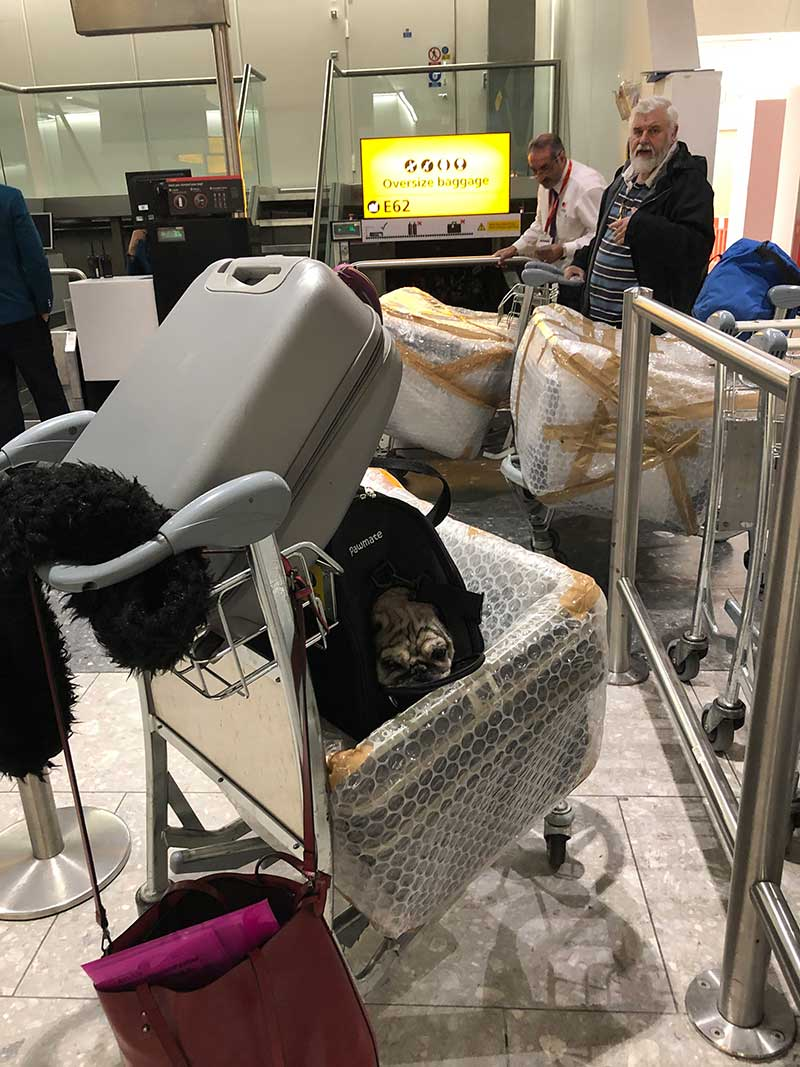 Checking in at Heathrow with Billy and the travel boxes we needed for the return flight