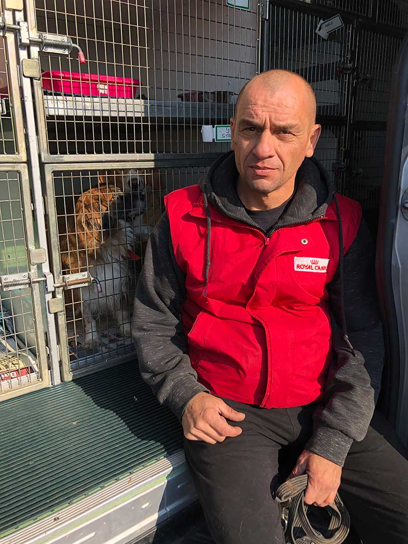 Panos, who operates a busy pet taxi service, brought Buddy, Star and Elsa to meet us