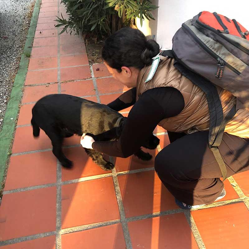 Huge hello hugs for darling Charlie in Estepona