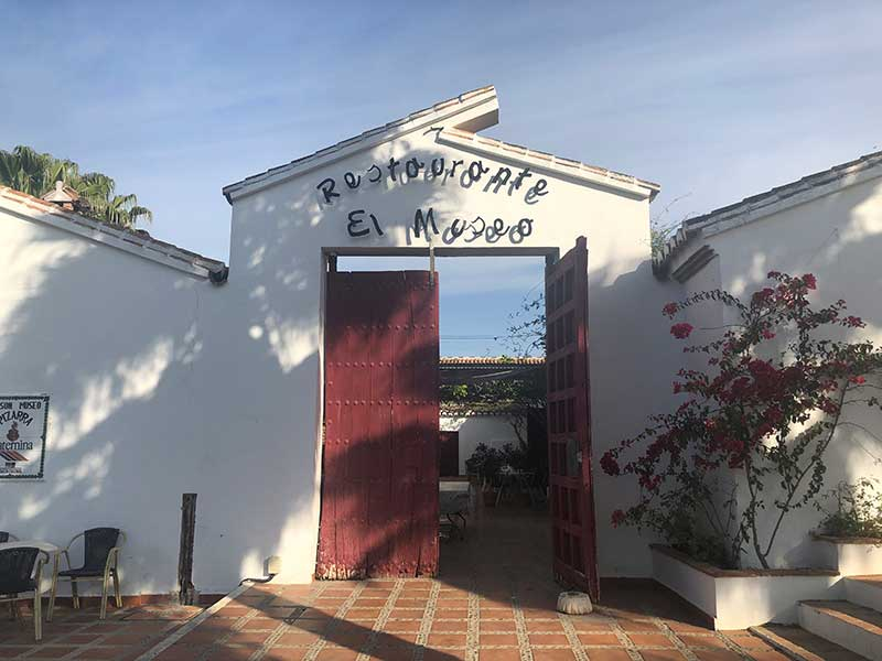 We found a wonderful place to stay in the countryside behind Malaga in Pizarra — dubbed 'valley of the sun' by the locals