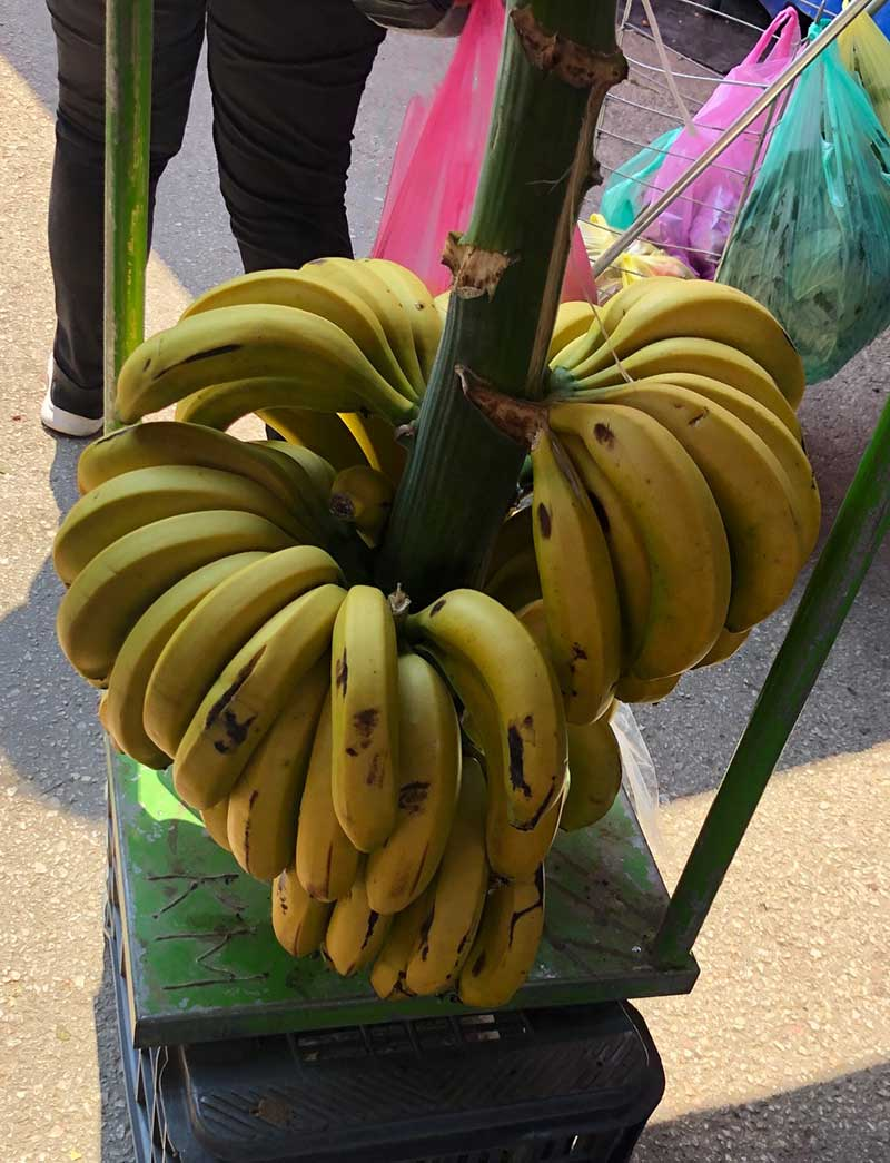A nifty way to display bananas