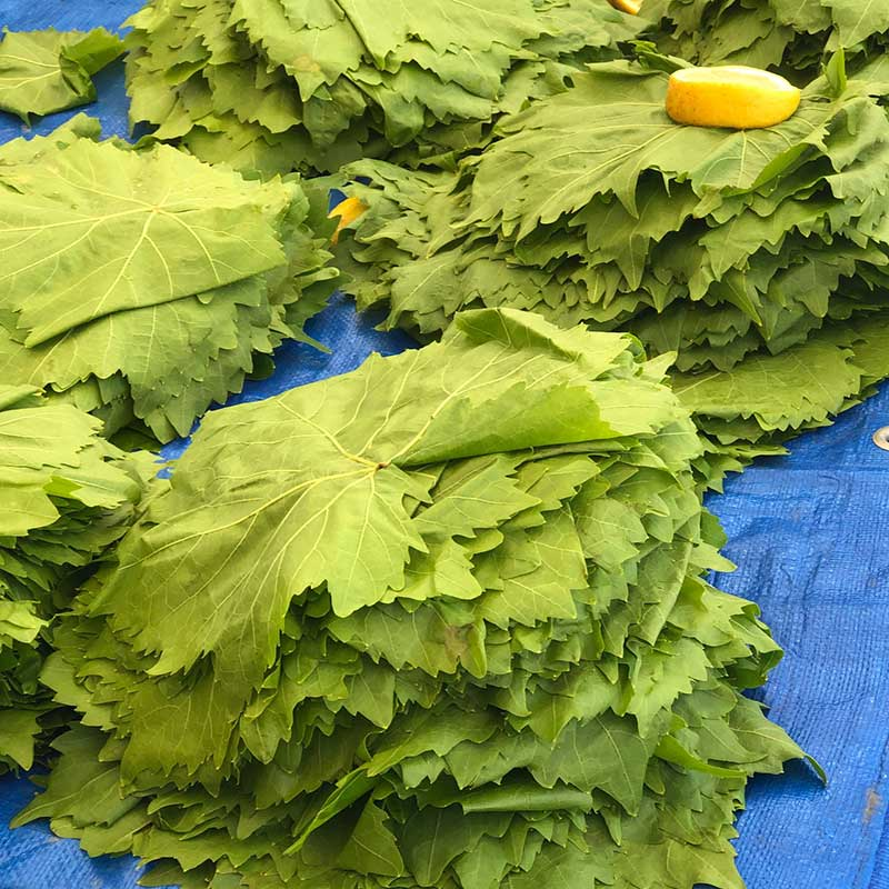 No Greek market would be complete without piles of fresh vine leaves